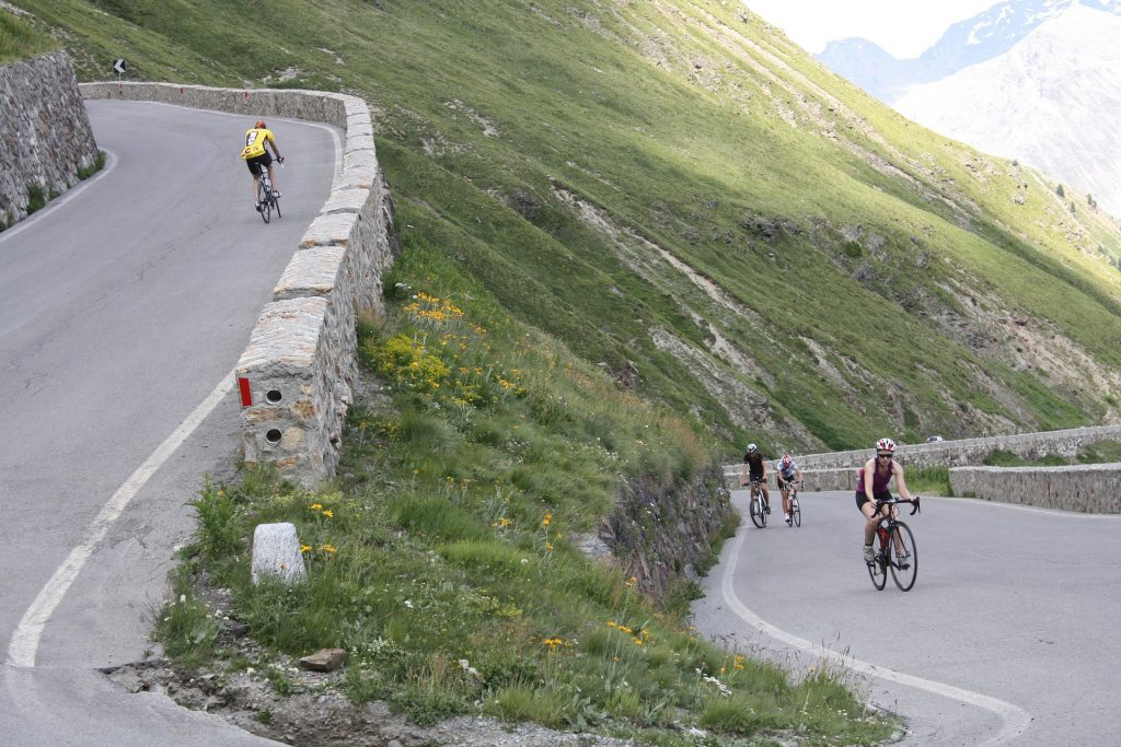 cyclists-269543_1920